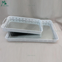 Mirror Glass Decorative Vintage White Metal Serving Tray